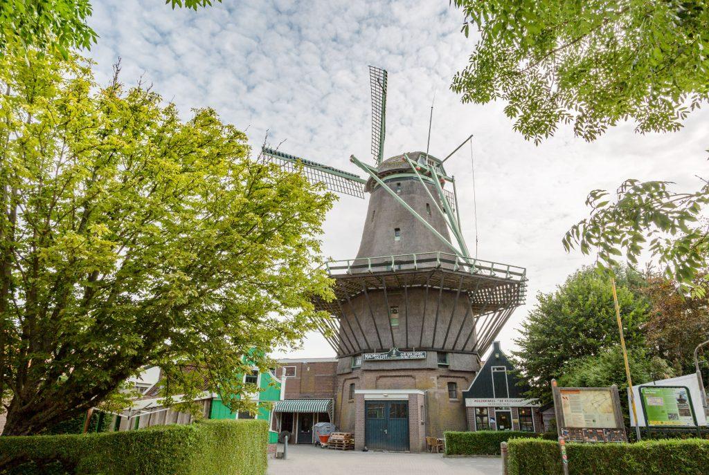 De molen in Oosterblokker